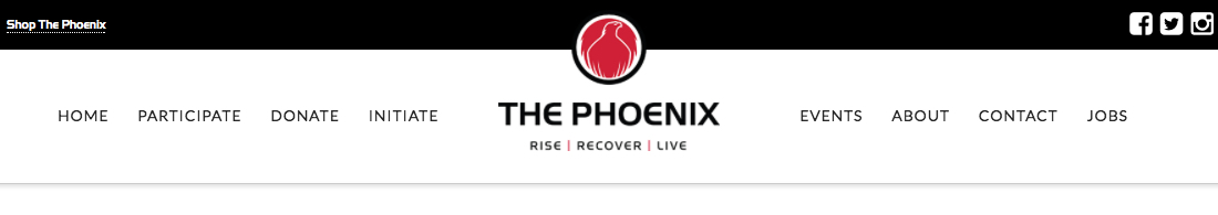 The Phoenix Rise Fellowship Program